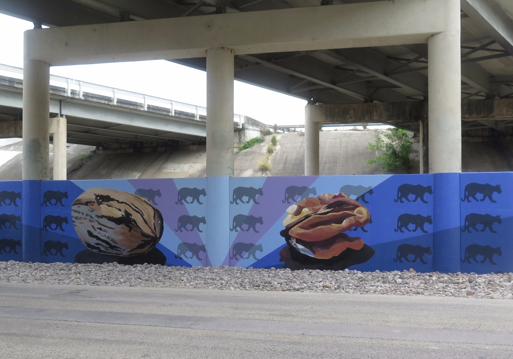 Mural of pecans and mountain lions by Cristina Sosa Noriega. Image courtesy of Rivard Report
